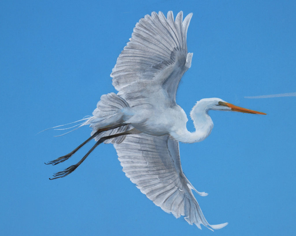 Low country mural with detail of egret flying in blue sky