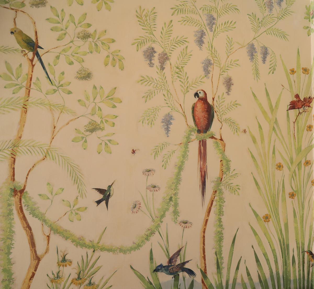 parrot image on wallpaper